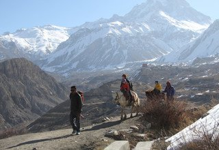 Jomsom Muktinath Trek for families (Perfect Holiday for Monsoon), 10 Days