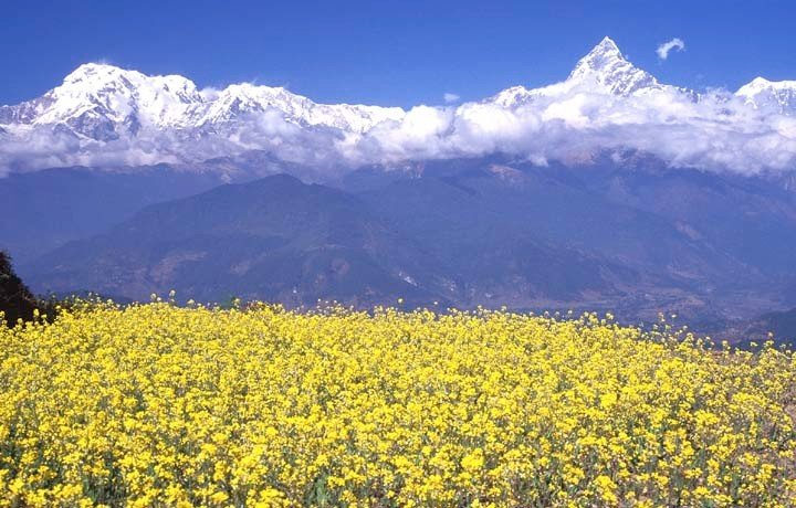 Image result for pokhara valley sightseeing