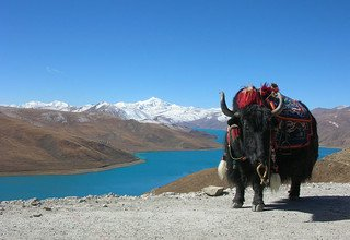 Tibet Lhasa Tour with Namtso Lake, 10 Days Ptivate Tour