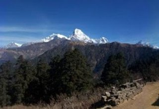 Mohare Danda Trek for Families (Community Eco Trail), 10 Days