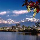 Sightseeing Tour to Pokhara, Tansen and Lumbini 13 Days Including Jungle Safari in Bardiya National Park