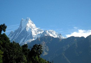 Machhapuchhre Model Trek, 11 Days