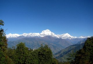 Horse Riding Trek to Annapurna Panorama with Children or without, 10 Days