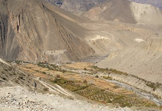 Dhorpatan Dolpo Trek, 30 Days