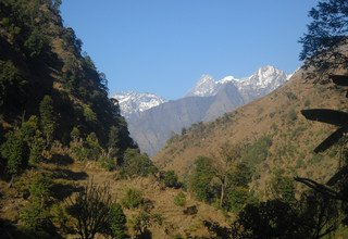 Tsum Valley and Manaslu Trek traverse Larkya-La Pass, 22 Days