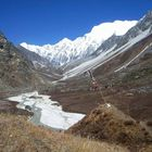 THE GREAT HIMALAYAN TRAIL,THE ALPINE WAY