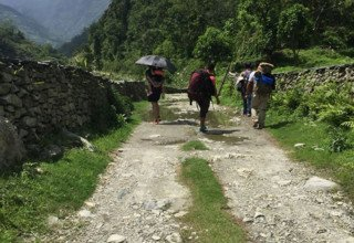 Ghorepani-Ghandruk Circuit (Poon Hill) Family Lodge Trek and Chitwan National Park Tour, 11 Days, from 16 June to 27 June 2016