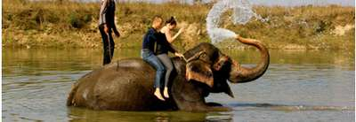 Chitwan and Lumbini Tour 6 Days, 14 February to 21 February 2014