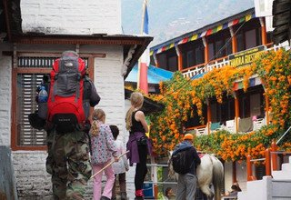 Ghorepani-Ghandruk Circuit (Poon Hill) Family Lodge Tour & Trek, 10 Days, 6 March to 15  March 2016