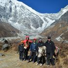 Horse Riding Trek to Langtang Valley with Children, 11 Days