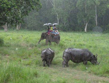 Chitwan National Park Tour Package, 3 Nights 4 Days