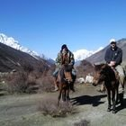 Everest Basecamp, Lodge Trek d'équitation, 16 jours