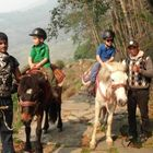 Horse Riding Trek to Annapurna Panorama with Children, 10 Days