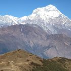 Khopra Danda (Ridge) Trek for families (South of Annapurnas), 12 Days