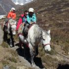 Horse Riding Trek to Langtang Valley with Children or without, 11 Days