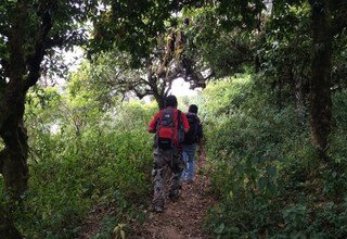 Chepang Hill Trek with Chitwan Tour, 12 Days